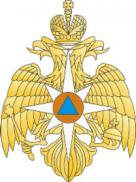 200px-emblem_of_the_russian_ministry_of_extraordinary_situations_middle